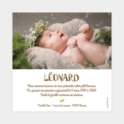 faire part de naissance lion photo